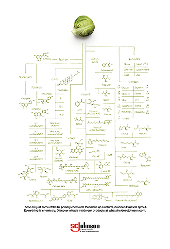 Everything is Chemistry PDF